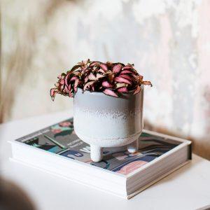 grey tiny planter 1