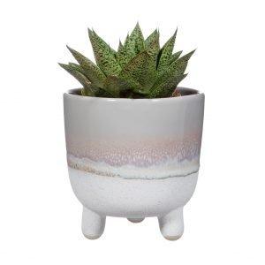 planter on legs 2